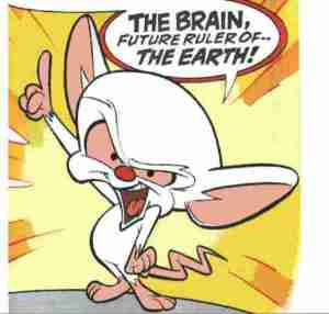 brain-animaniacs